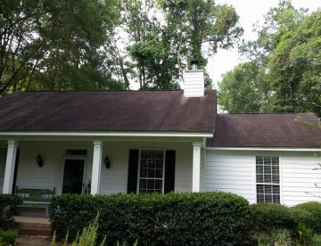 Tallahassee roof cleaning before