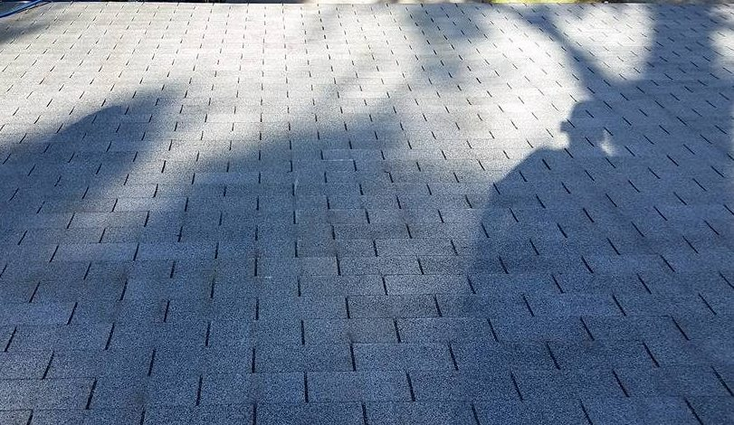 Tallahassee roof cleaning