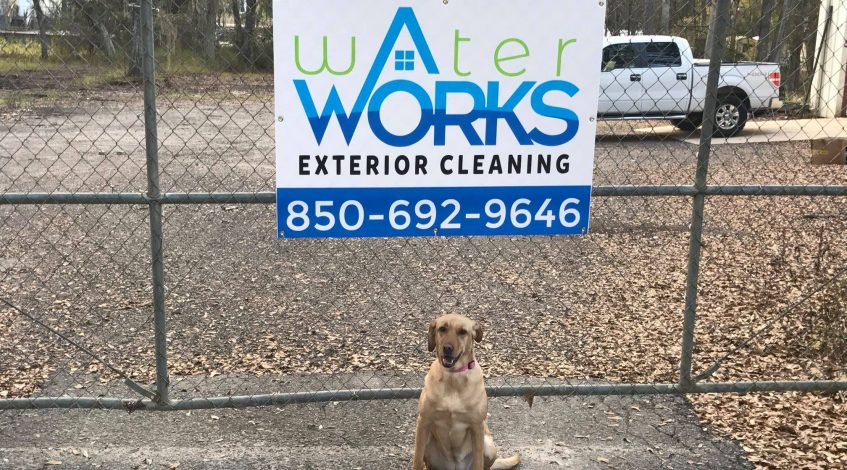 Water Works Exterior Cleaning